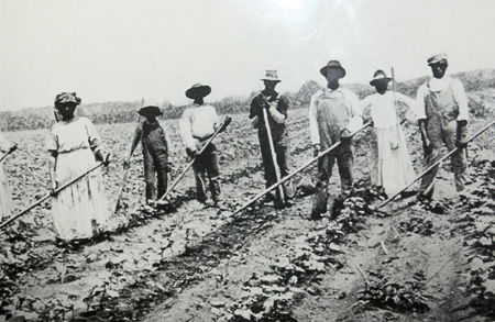 One of the many photos of black share-croppers at South Carolina